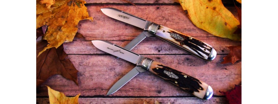 Stag Pocket Knife